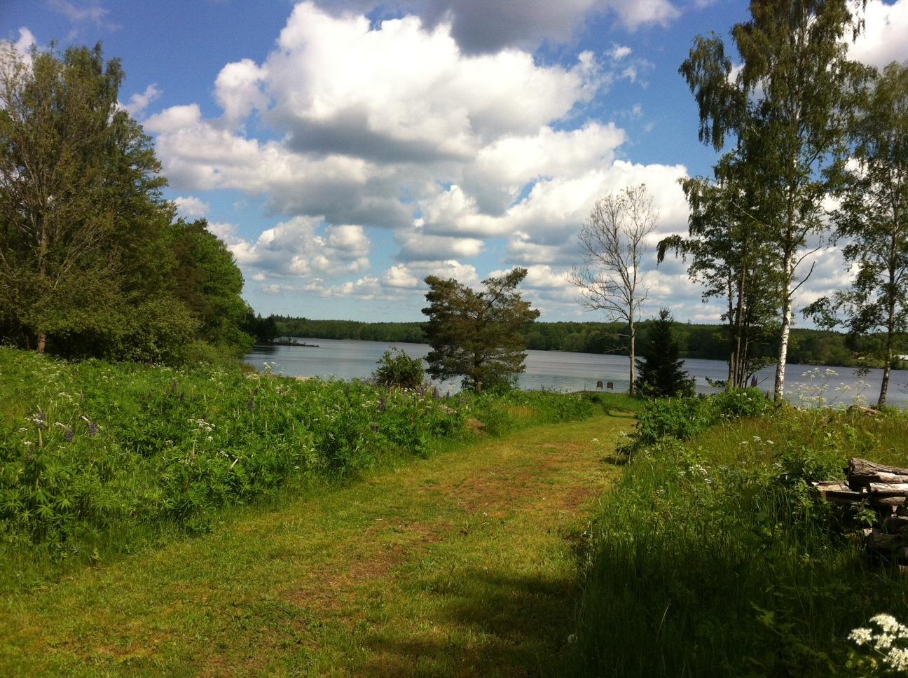 utsikt mot sjön
