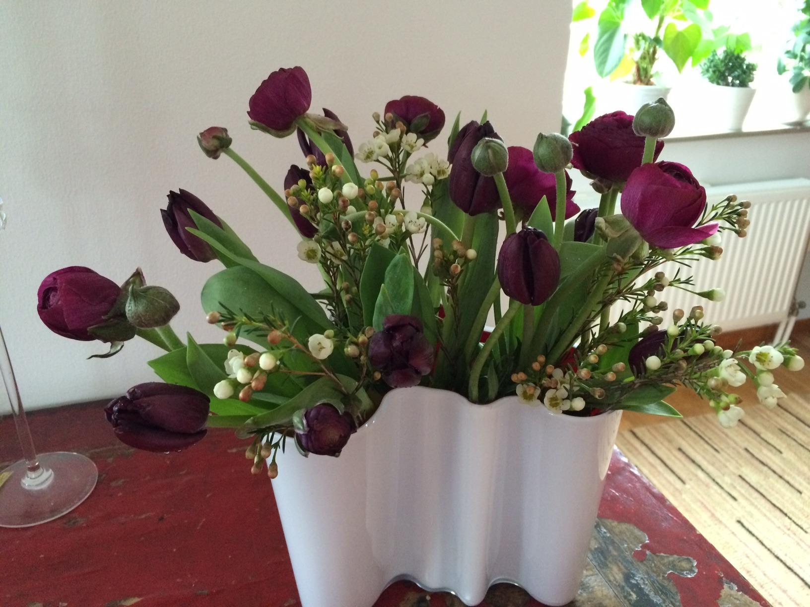 Tulips IMG_0055