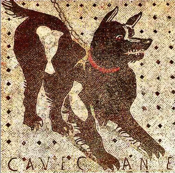 Dogs pompeii