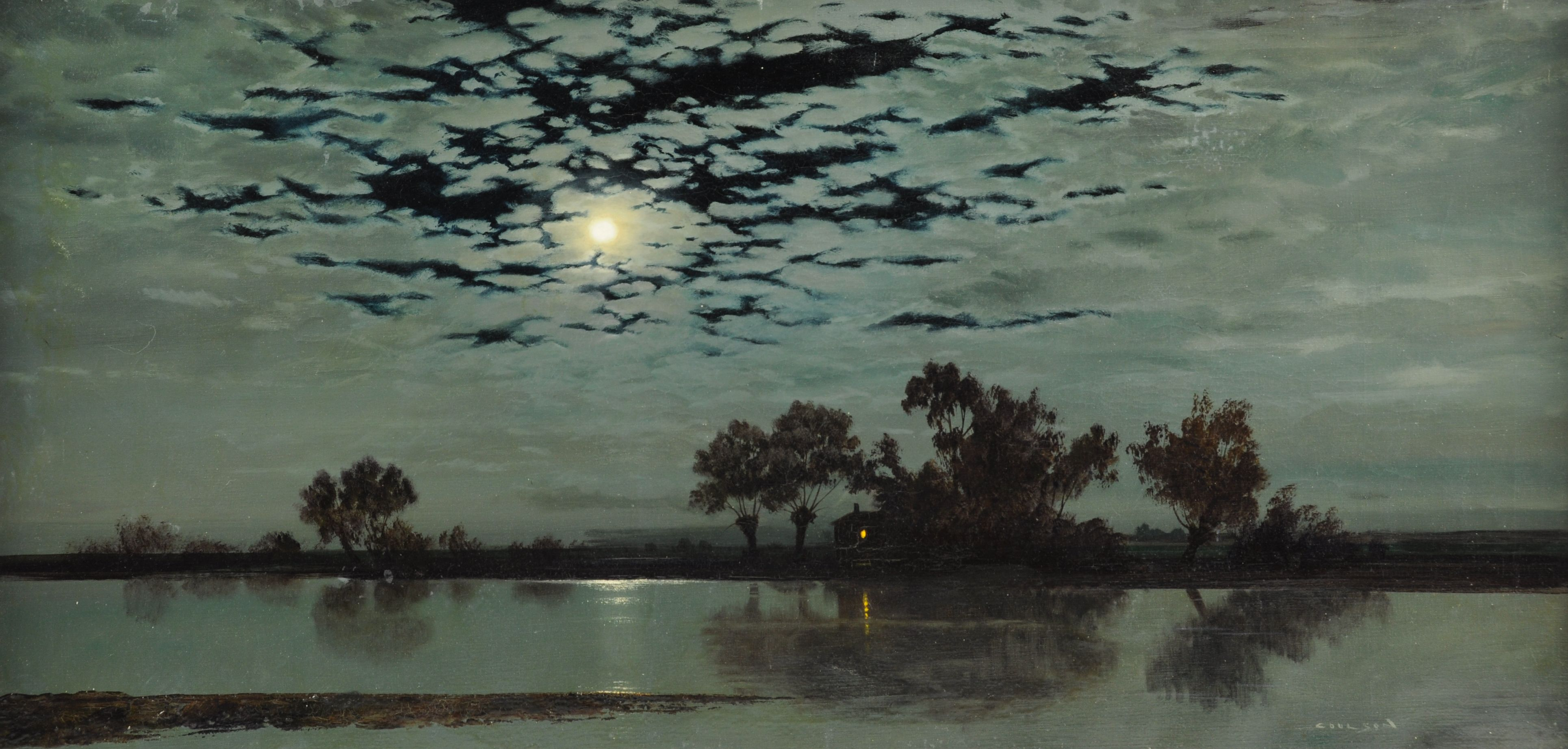stars-moonlight-on-the-fens-g-coulson