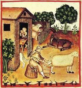 felicia medieval-livestock